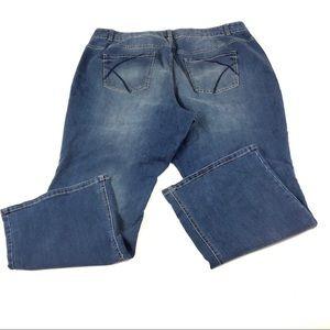 Lane Bryant Women's Blue Jeans 24